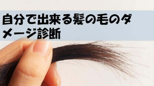 髪の毛のダメージ診断