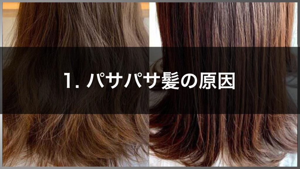 パサパサ髪の原因