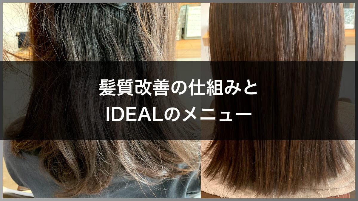 髪質改善の仕組みとIDEALのメニュー
