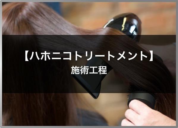 201001 imagephoto hahonico kouka 05